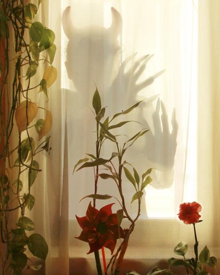 El diablo agazapado en la ventana@Tola Castillo